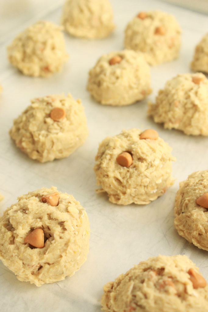 oatmeal scotchies | oatmeal scotchie cookies | oatmeal scotchie cookie recipes | oatmeal cookie recipes | soft oatmeal cookies | soft oatmeal cookie recipes