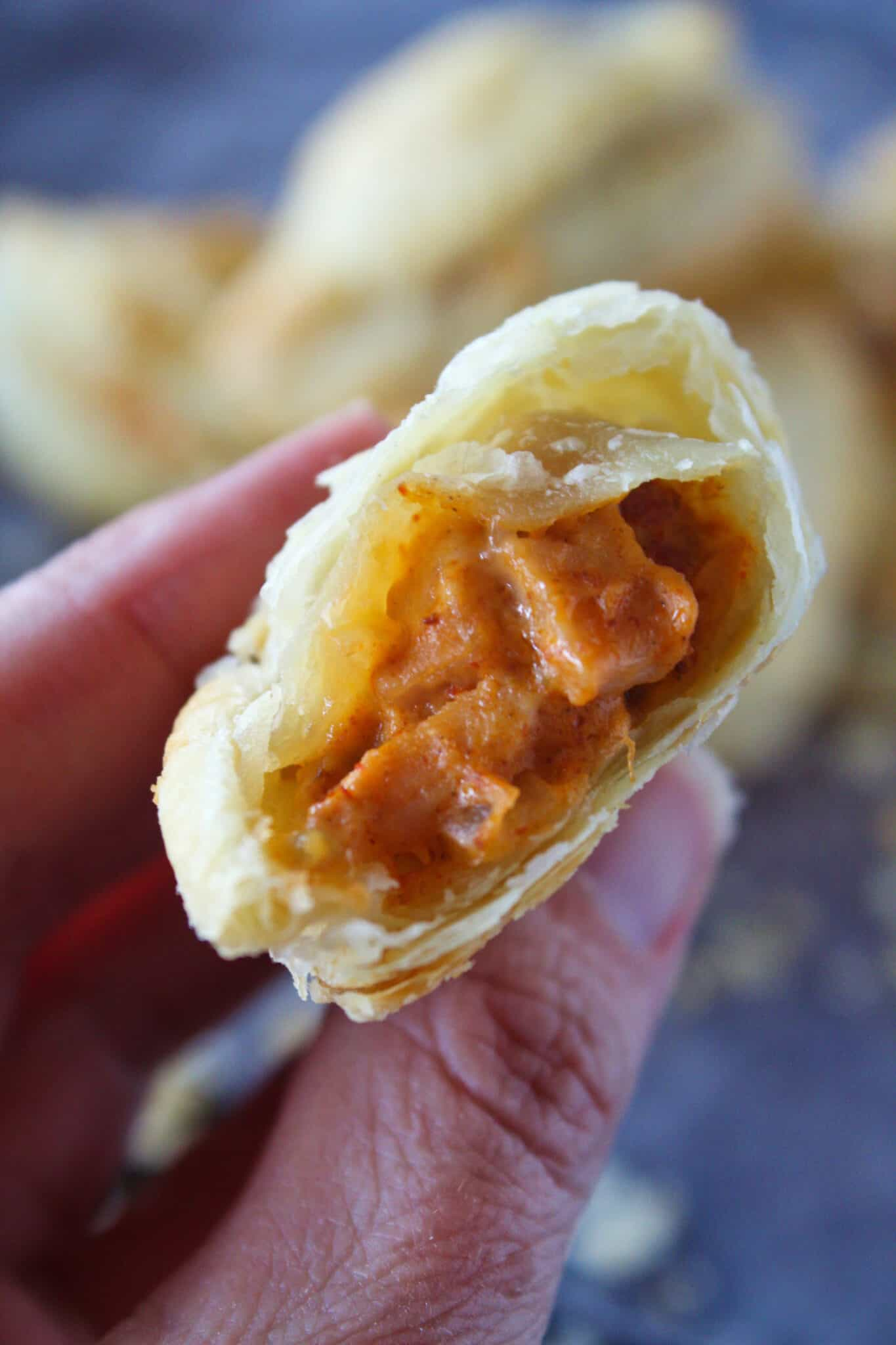 Turkey Empanadas Recipe featured by top US food blog, Practically Homemade.