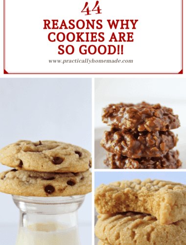 44 Reasons Why Cookies are SO Good, a fun post featured by top US cookie blog, Practically Homemade