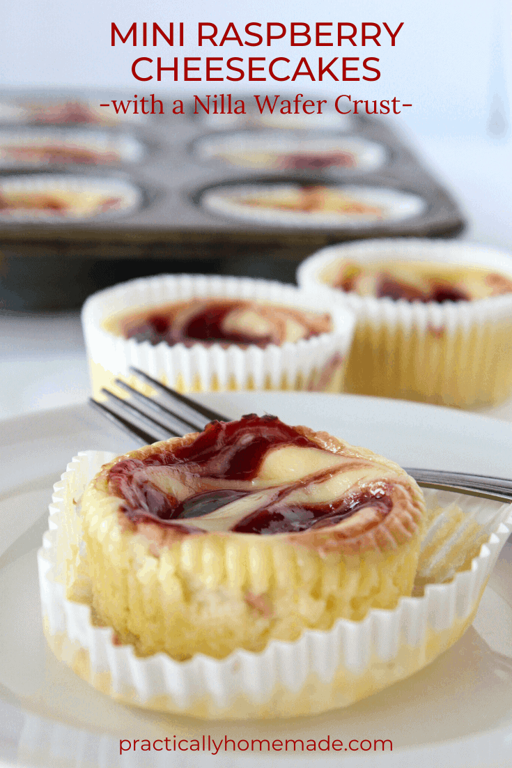 Dessert Cup Ideas: Mini Raspberry Cheesecakes featured by top US dessert blog, Practically Homemade.