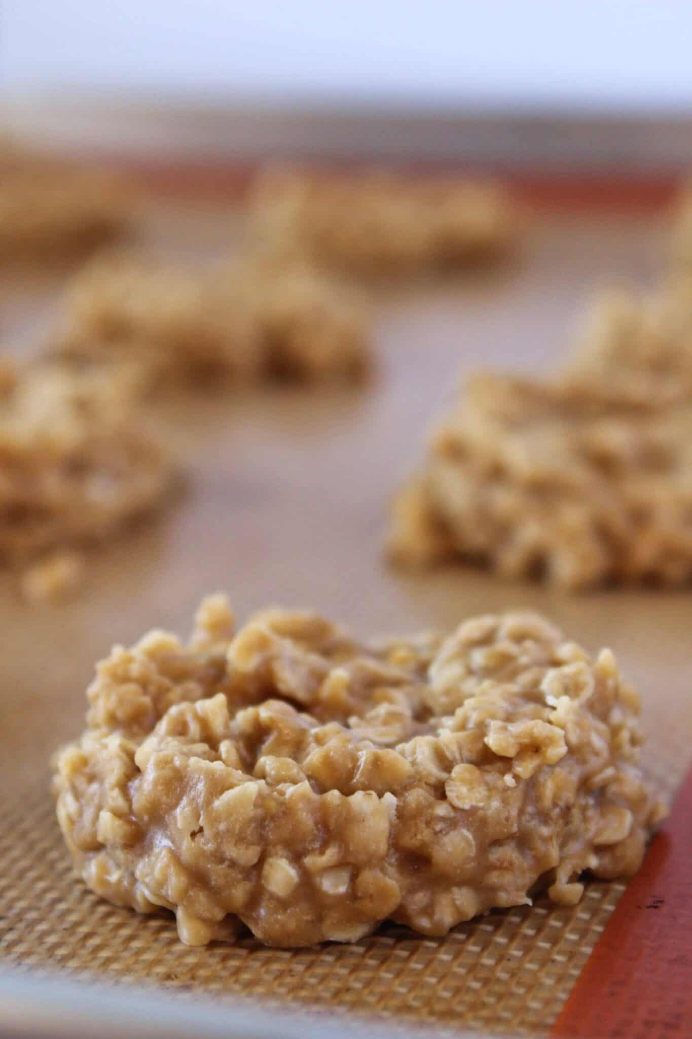 Trader Joe's Copycat No Bake Cookie Butter Cookies Recipe featured by top US cookie blogger, Practically Homemade