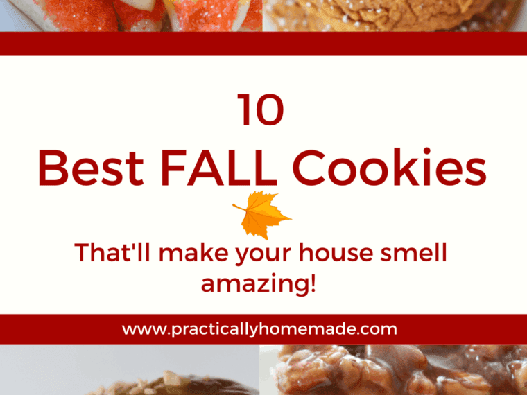 The Best Fall Cookies featured by top US cookie blogger, Practically Homemade.