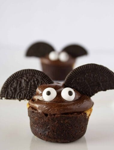 Spooky Brownie Bats Bites Recipe featured by top US dessert blogger, Practically Homemade