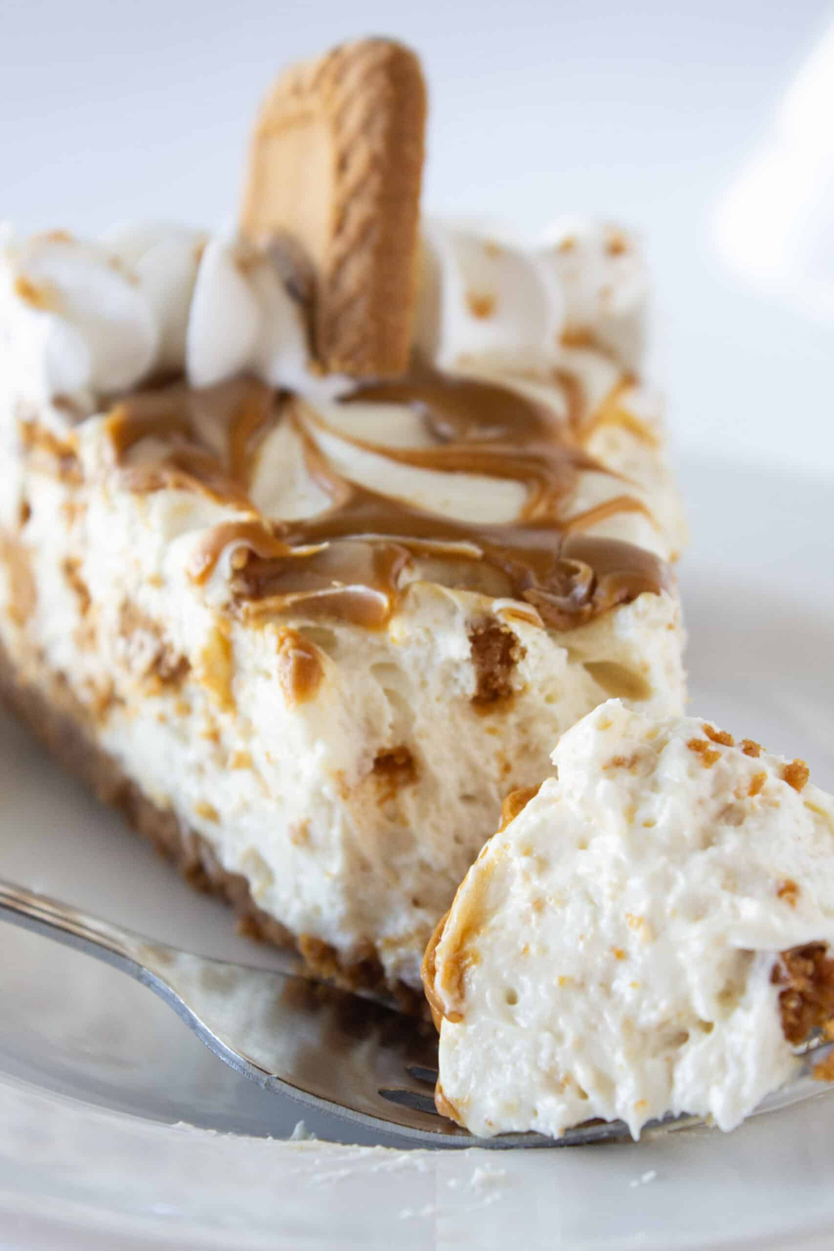 Cookie Butter No Bake Cheesecake Recipe featured by top US dessert blogger, Practically Homemade
