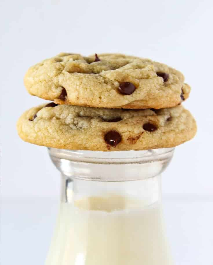 Celebrate National Chocolate Chip Day with the 5 Best Chocolate Chip Cookie Recipes featured by top US cookies blogger, Practically Homemade